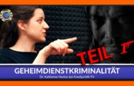 Geheimdienst-Kriminalität – Dr. Katherine Horton