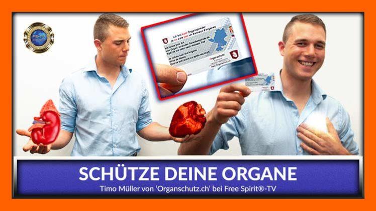 Schütze Deine Organe! – Timo Müller