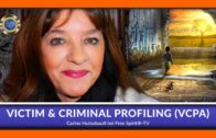 Victim & Criminal Profiling (VCPA) – ENGLISH